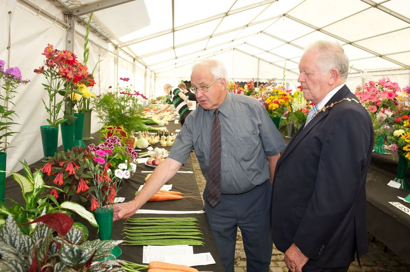 Knowsley Flower Show 2013